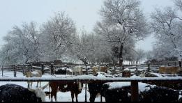 Captura de pantalla 2015-12-29 a las 14.02.16